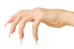 Predatory woman hand with nails Stock Photography