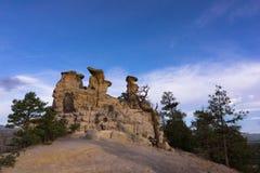 Predikstolen vaggar i Colorado Springs, Colorado Royaltyfria Foton