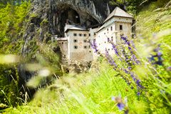 Predjama castle with flowers on foreground Royalty Free Stock Photos