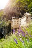 Predjama castle and wild flowers Royalty Free Stock Photos