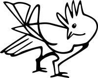 Preening ptak Obrazy Royalty Free