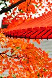 A prefect combination: the spirit of Japan and the nature. Royalty Free Stock Photography