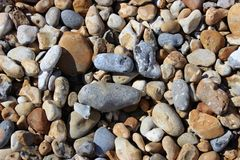 Beach Pebbles on a Sunny day. Prefect Shot of Beach Pebbles in Eastbourne on a sunny morning Royalty Free Stock Photography
