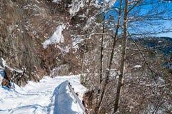 Prefectura de Nagano de la escena de la nieve, Japón Foto de archivo