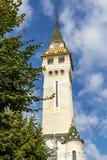 Prefectuur van Mures in Targu Mures, Roemenië royalty-vrije stock fotografie