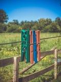 Pregadores de roupa coloridos em um fio fotos de stock royalty free