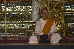 Pregando al Buddha Immagine Stock Libera da Diritti
