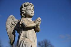 Pregare cherubino Immagine Stock