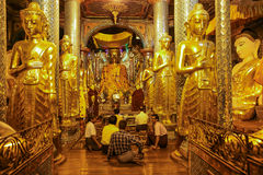 Pregare la pagoda Rangoon di Shwedagon nel Myanmar Fotografia Stock Libera da Diritti