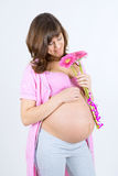 Preggers Royalty Free Stock Images