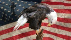Preghiera degli Stati Uniti d'America immagine stock libera da diritti