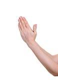 Preghiera delle mani Fotografia Stock Libera da Diritti