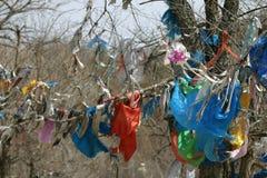 Preghiere in alberi Immagini Stock Libere da Diritti