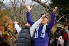 Preghiere giapponesi divertenti Immagine Stock Libera da Diritti