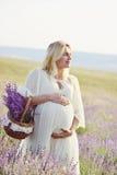 Pregnance Stock Foto's