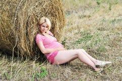 Pregnance in farmland stock image