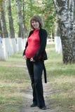 Pregnancy Royalty Free Stock Photo