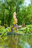 Pregnancy. Pregnant female stands near the lake stock photo