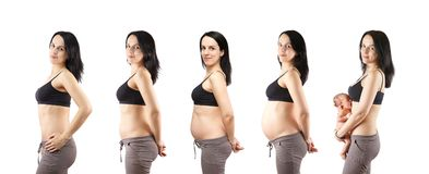 The pregnancy. Royalty Free Stock Image
