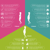 Pregnancy and birth infographics and stages Stock Image