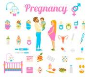 Pregnancy, birth and newborn baby vector icons. Childbirth and motherhood. Pregnancy, birth and newborn baby vector icons.Conception of the child. Medicine Stock Photos