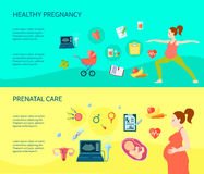 Pregnancy Compositions Set Stock Image