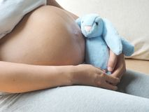 Pregnancy concept. Pregnant woman is playing the rabbit doll in her hand. Stock Image