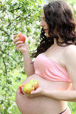 Pregnancy Concept. Pregnant young beautiful woman holding some apples. It is in a pink dress, belly naked. Nature Royalty Free Stock Images