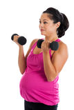 Pregnancy fitness portrait Stock Images