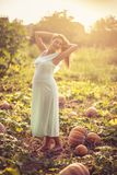Pregnancy gives a beautiful glow to women. Happy pregnant woman standing on field with pumpkin. Copy space stock images
