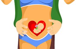 Pregnancy and heart Stock Images