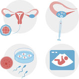 Pregnancy icon. Info-graphics  medical set Royalty Free Stock Photography