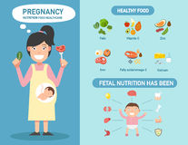 Pregnancy nutrition food healthcare infographics,illustration. Stock Photo
