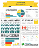 Pregnancy nutrition infographic Royalty Free Stock Photo