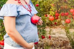 Pregnancy and nutrition - pregnant woman with pomegranate fruit in hand on sunset garden background. Fertility concept. Selective. Focus, space for text Royalty Free Stock Photography