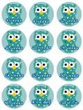 Pregnancy Owls - Baby Boy. Cute pregnancy owls with weeks Stock Illustration