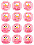 Pregnancy Owls - Baby Girl. Cute owls with weeks for pregnancy occasions Royalty Free Stock Images