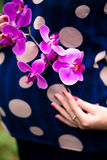 Pregnancy. pregnance woman with flower Royalty Free Stock Photography