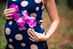 Pregnancy. pregnance woman with flower Royalty Free Stock Images