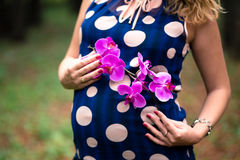 Pregnancy. pregnance woman with flower Royalty Free Stock Image