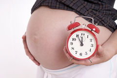 Pregnancy royalty free stock photography