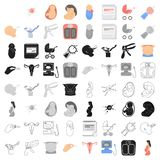 Pregnancy set icons in cartoon style. Big collection of pregnancy vector symbol stock illustration. Pregnancy set icons in cartoon style. Big collection of Stock Images