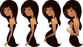Pregnancy stages in vector stock illustration