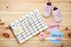 Pregnancy test with paper calendar. Flowers and baby boots on wooden table stock photography