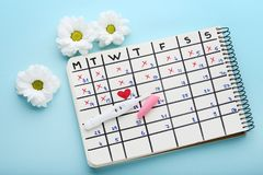 Pregnancy test with calendar. Pregnancy test with paper calendar and flowers on blue background stock images