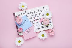 Pregnancy test with calendar and flowers. Pregnancy test with paper calendar and flowers on pink background stock photo