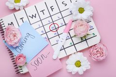 Pregnancy test with calendar and flowers. Pregnancy test with paper calendar and flowers on pink background royalty free stock photo