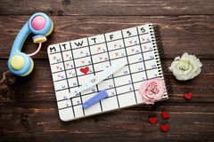 Pregnancy test with paper calendar. And flowers on wooden table royalty free stock image