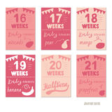 Pregnancy 16-21 weeks. Pregnancy 12 weeks Vector design templates for journal cards, scrapbooking cards, greeting cards, gift cards, patterns, blogging. Planner Royalty Free Stock Photos