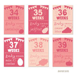 Pregnancy 34-39 weeks Vector design templates for journal cards Royalty Free Stock Photo